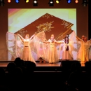 2015-12-06-charity-casino-adler-wiegele-show-102