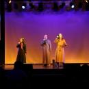 2015-12-06-charity-casino-adler-wiegele-show-78