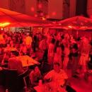 Die Gig-Geburtstagsparty 2011