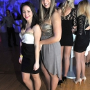 Ursulinen_Ball_2013_2001