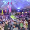 Pink Lake Almdudler Party 2014