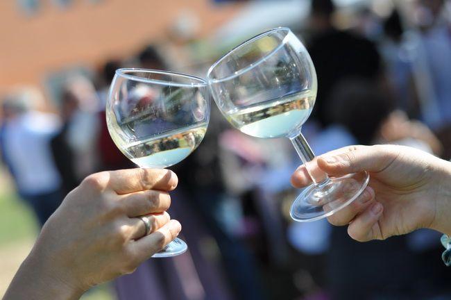Sittersdorfer Weinfest 2011